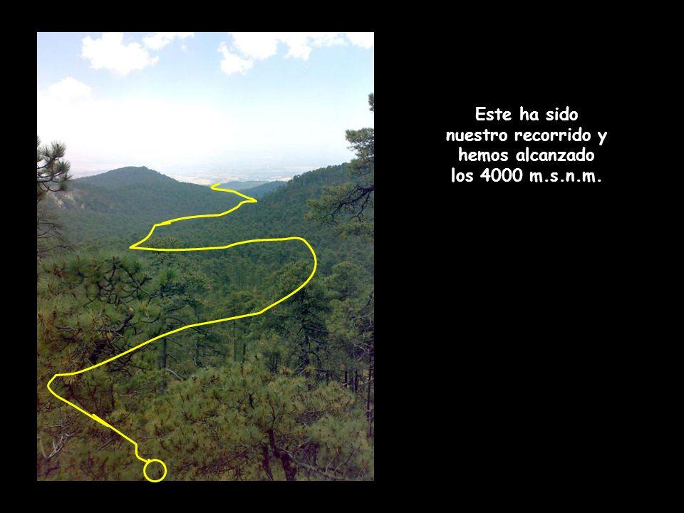 Encontramos un sendero de unos 70 cm de ancho con bicicleta en la espalda, esquivamos rocas, ramas y lo mas difícil conservar el equilibrio para no caer al fondo