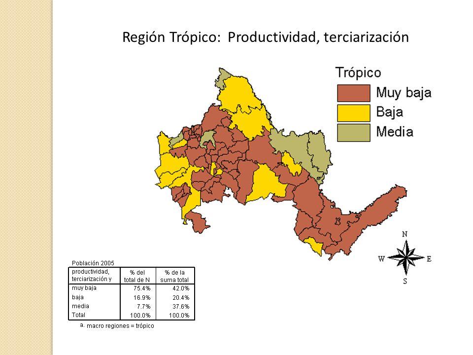 Región Trópico: Productividad, terciarización