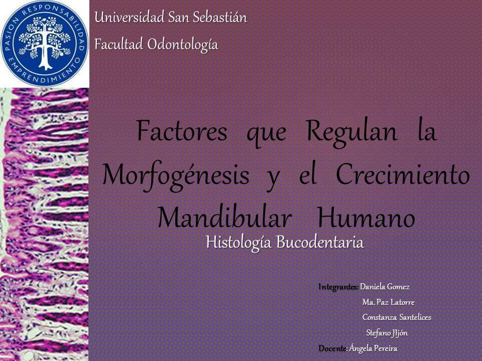 Introducción Morfogénesis de la mandíbula viserocráneo neurocráneo SNC Músculos faciales y masticadores Tej.