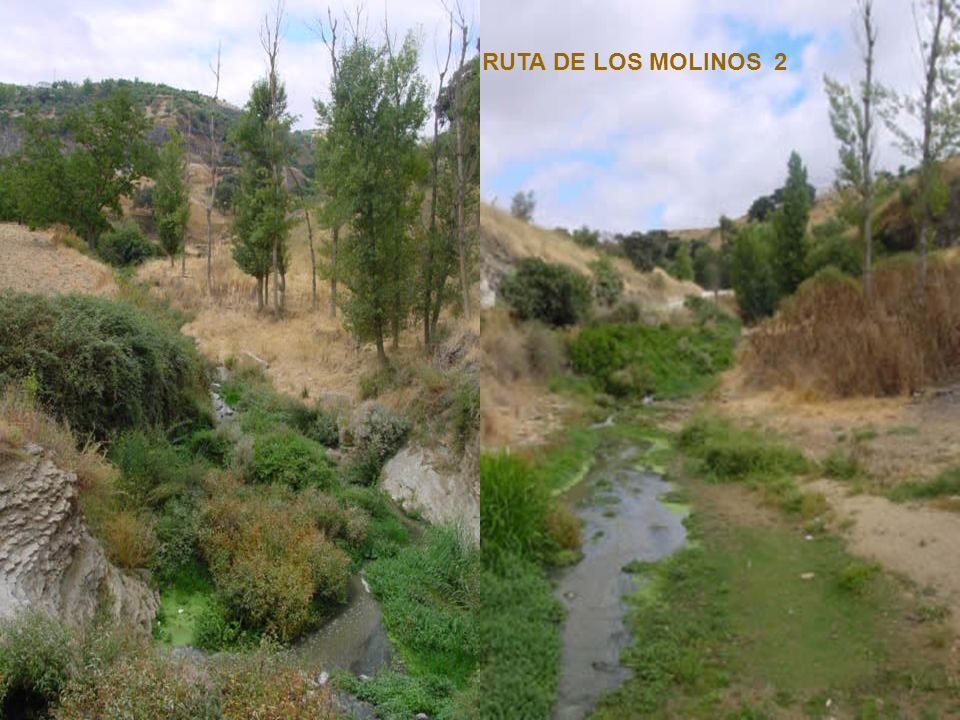 RUTA DE LOS MOLINOS 1