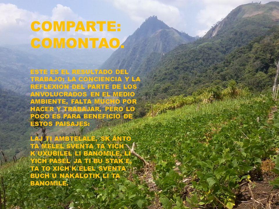 COMPARTE: COMONTAO. ESTE ES EL RESULTADO DEL TRABAJO: LA CONCIENCIA Y LA REFLEXION DEL PARTE DE LOS ANVOLUCRADOS EN EL MEDIO AMBIENTE, FALTA MUCHO POR