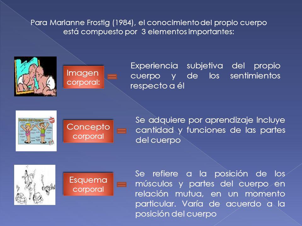Para Marianne Frostig (1984), el conocimiento del propio cuerpo está compuesto por 3 elementos importantes: Imagen corporal: Experiencia subjetiva del propio cuerpo y de los sentimientos respecto a él Concepto corporal Se adquiere por aprendizaje Incluye cantidad y funciones de las partes del cuerpo Esquema corporal Se refiere a la posición de los músculos y partes del cuerpo en relación mutua, en un momento particular.