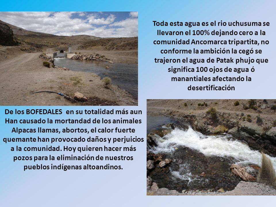 Cerro chokekollo ó wichuk´ollo este cerro será destrozado en mil pedazos y contaminara toda la zona altoandina Qullana aymara.