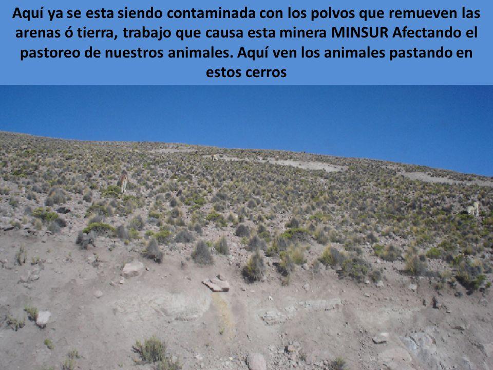 Camioneta de la Empresa Minera Minsur circulando revisando y viendo a los Intrusos que somos nosotros mismos en nuestro territorio, esta minera son lo