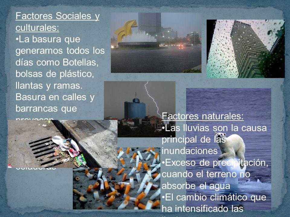 Factores Sociales y culturales: La basura que generamos todos los días como Botellas, bolsas de plástico, llantas y ramas.