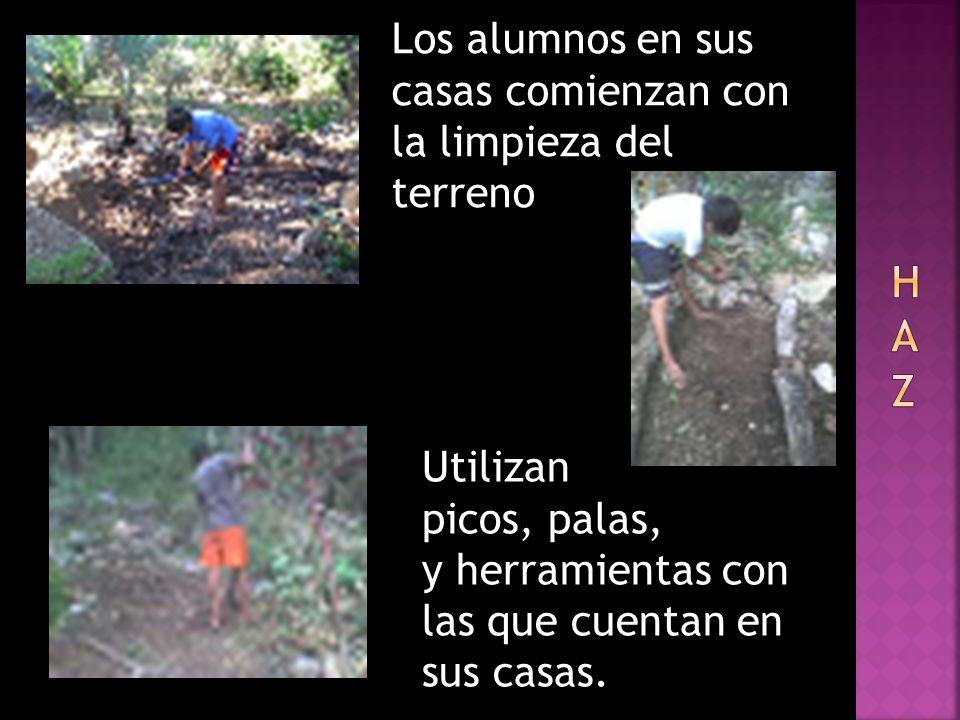 Los alumnos en sus casas comienzan con la limpieza del terreno Utilizan picos, palas, y herramientas con las que cuentan en sus casas.
