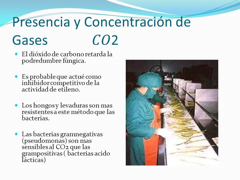 Presencia y Concentración de Gases 2 El dióxido de carbono retarda la podredumbre fúngica. Es probable que actué como inhibidor competitivo de la acti