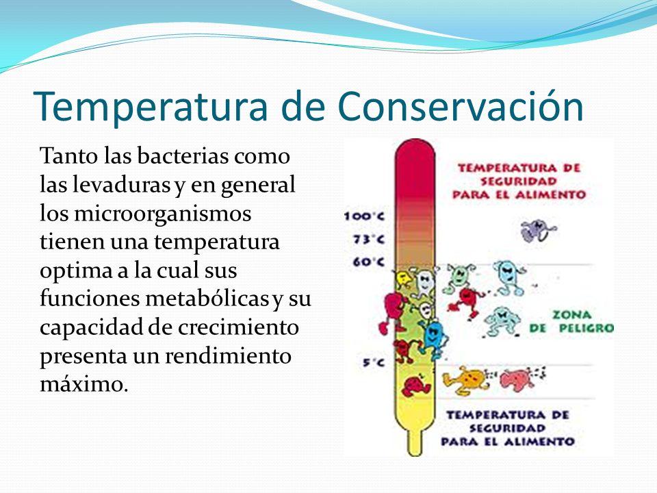Temperatura de Conservación Tanto las bacterias como las levaduras y en general los microorganismos tienen una temperatura optima a la cual sus funcio
