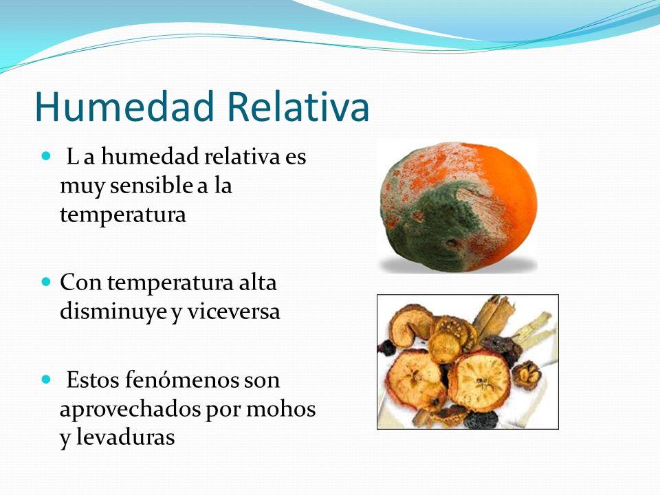 Humedad Relativa L a humedad relativa es muy sensible a la temperatura Con temperatura alta disminuye y viceversa Estos fenómenos son aprovechados por