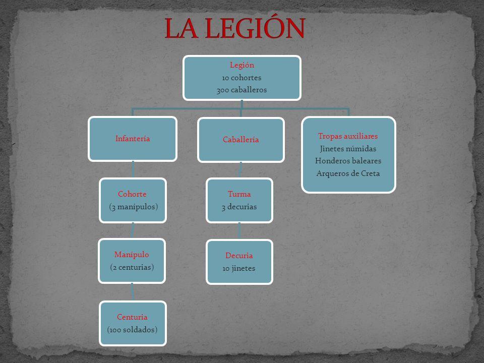 Legión 10 cohortes 300 caballeros Infantería Cohorte (3 manípulos) Manípulo (2 centurias) Centuria (100 soldados) Caballería Turma 3 decurias Decuria