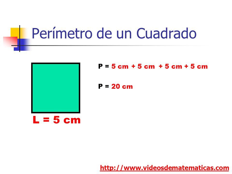 Perímetro de un Cuadrado http://www.videosdematematicas.com L = 5 cm P = 5 cm+ 5 cm P = 20 cm