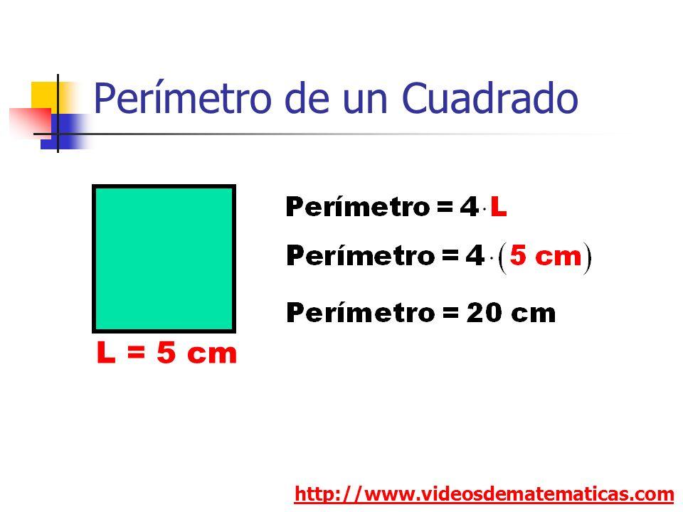 Perímetro de un Cuadrado http://www.videosdematematicas.com L = 5 cm