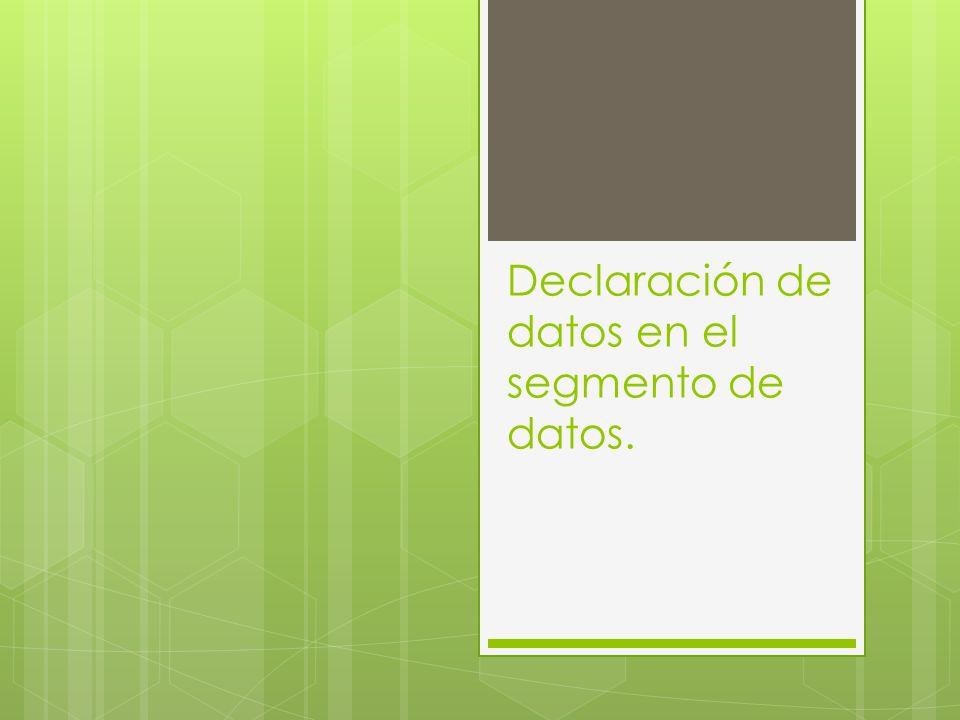 Declaración de datos en el segmento de datos.