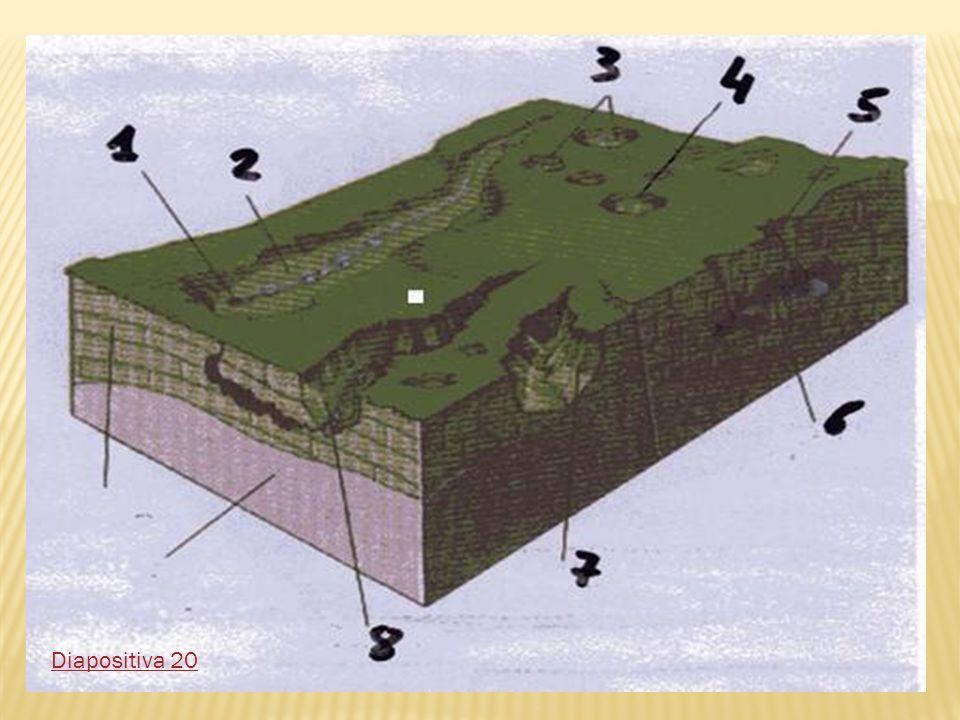 Diapositiva 20