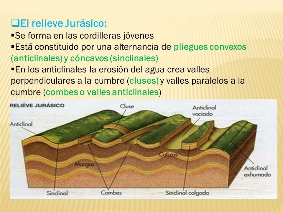 El relieve Jurásico: Se forma en las cordilleras jóvenes Está constituido por una alternancia de pliegues convexos (anticlinales) y cóncavos (sinclinales) En los anticlinales la erosión del agua crea valles perpendiculares a la cumbre (cluses) y valles paralelos a la cumbre (combes o valles anticlinales)