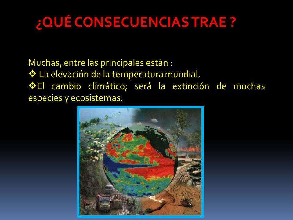¿QUÉ CONSECUENCIAS TRAE ? Muchas, entre las principales están : La elevación de la temperatura mundial. El cambio climático; será la extinción de much