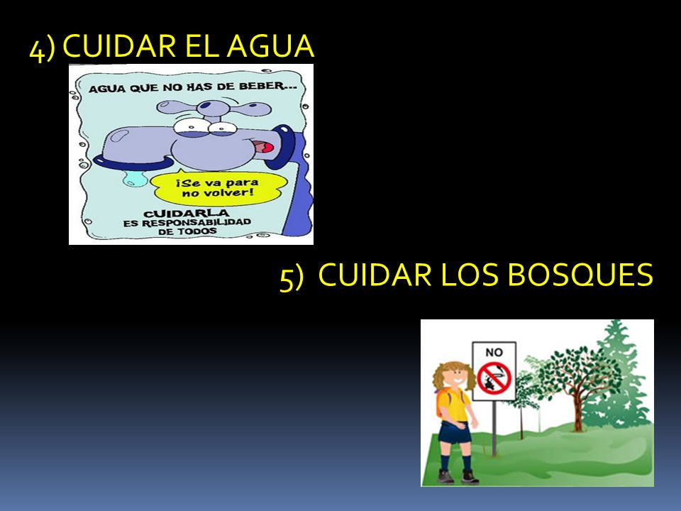 4) CUIDAR EL AGUA 5) CUIDAR LOS BOSQUES