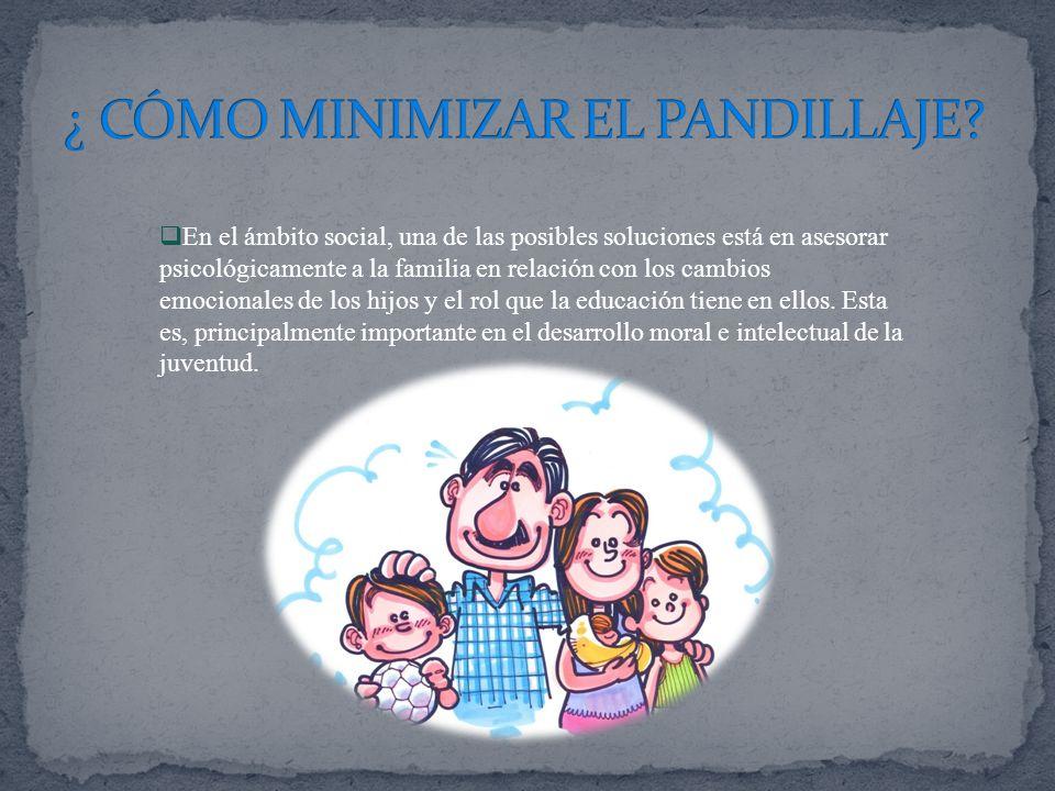 En el ámbito social, una de las posibles soluciones está en asesorar psicológicamente a la familia en relación con los cambios emocionales de los hijo