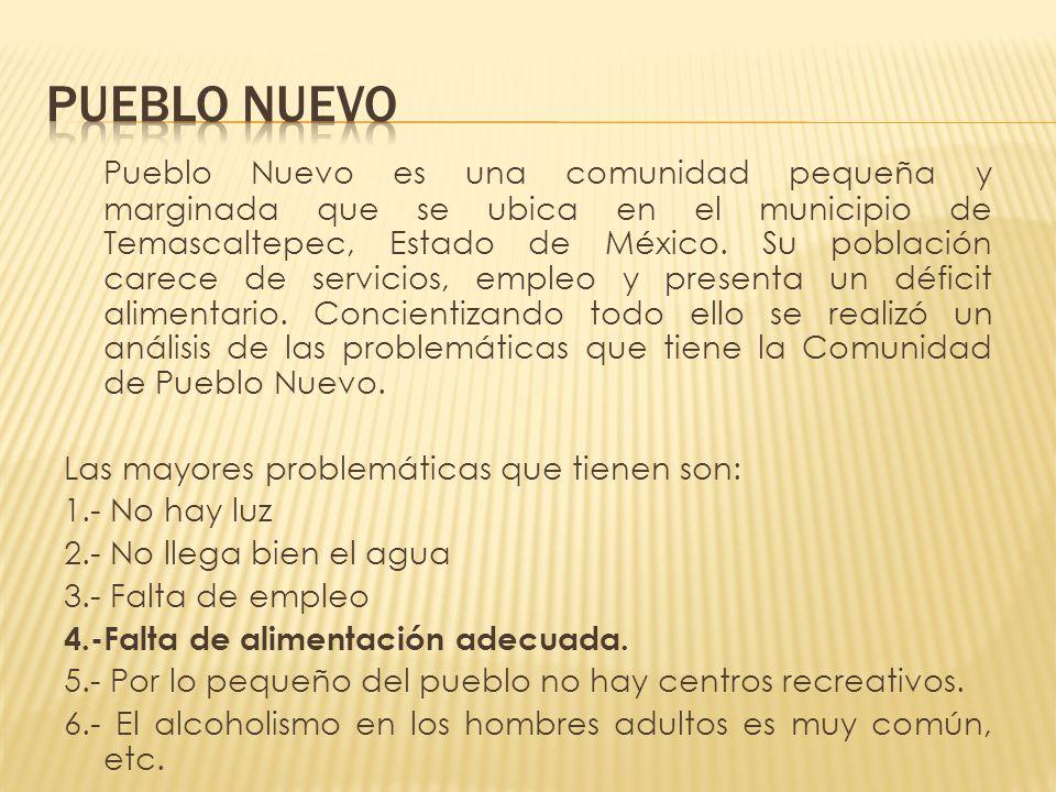 Pueblo Nuevo es una comunidad pequeña y marginada que se ubica en el municipio de Temascaltepec, Estado de México. Su población carece de servicios, e