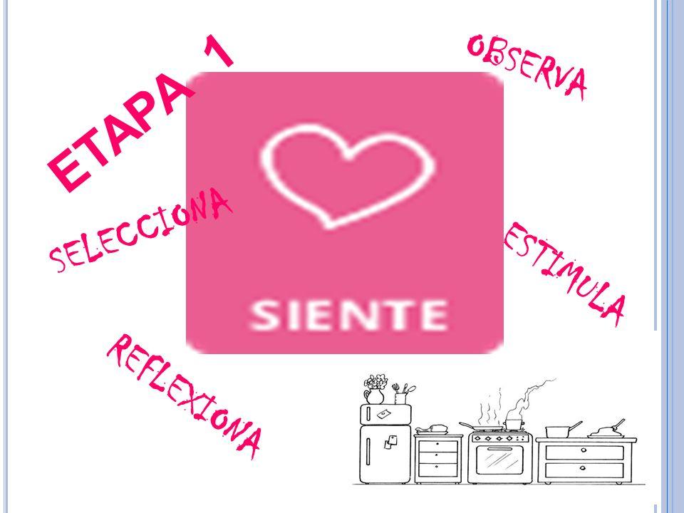 SOLICITUDES A DIVERSAS INSTANCIAS: ELEKTRA, CRISA Y EL ANFORA.