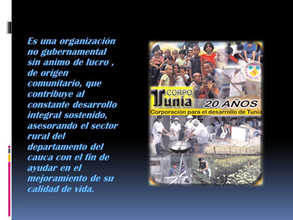 Es una organización no gubernamental sin animo de lucro, de origen comunitario, que contribuye al constante desarrollo integral sostenido, asesorando