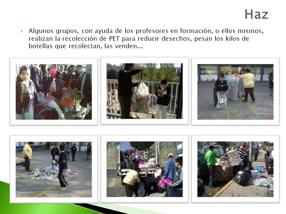 Algunos grupos, con ayuda de los profesores en formación, o ellos mismos, realizan la recolección de PET para reducir desechos, pesan los kilos de bot