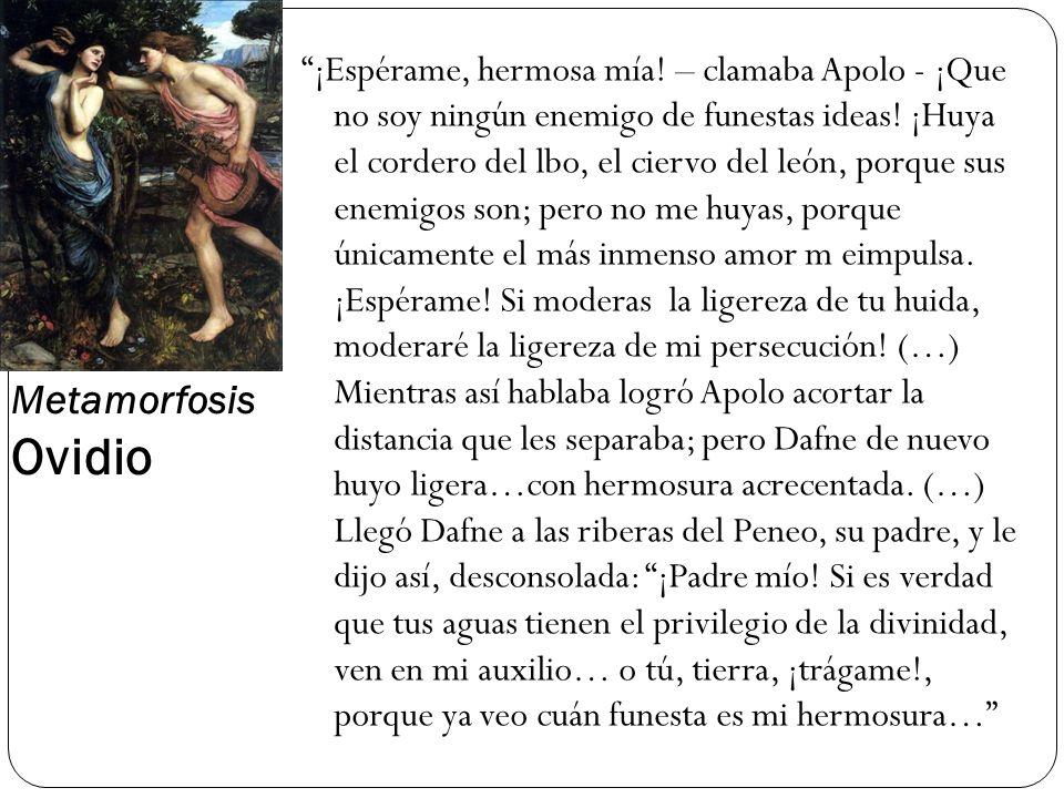 Metamorfosis Ovidio ¡Espérame, hermosa mía! – clamaba Apolo - ¡Que no soy ningún enemigo de funestas ideas! ¡Huya el cordero del lbo, el ciervo del le