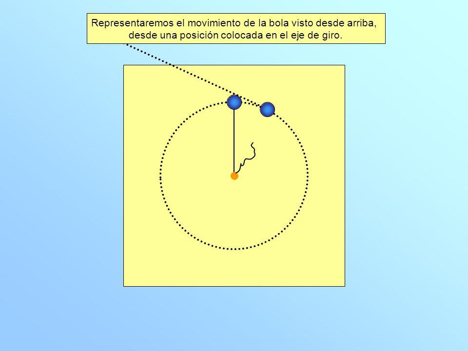 Al romperse la cuerda, la suma de las fuerzas que actúan sobre la bola es nula.