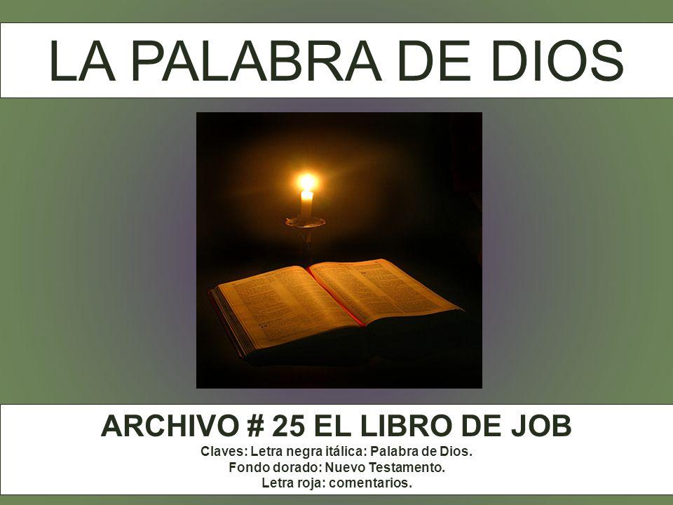 El Libro de Job forma parte de de los libros didácticos del Antiguo Testamento. El gran motivo del libro de Job es el hombre, a la vez concreto e inte