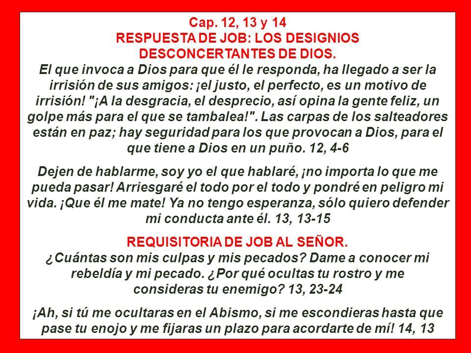 Cap. 11 PRIMER DISCURSO DE SOFAR: LA SUMISION AL JUICIO DE DIOS. Tú has dicho: