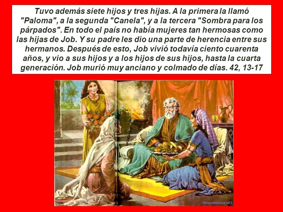 LA REIVINDICACION DE JOB. Después, el Señor cambió la suerte de Job, porque él había intercedido en favor de sus amigos, y duplicó todo lo que Job ten