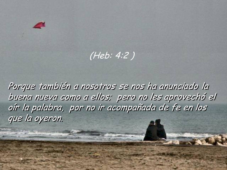 Temamos, pues, no sea que permaneciendo aún la promesa de entrar en su reposo, alguno de vosotros parezca no haberlo alcanzado. (Heb: 4:1)