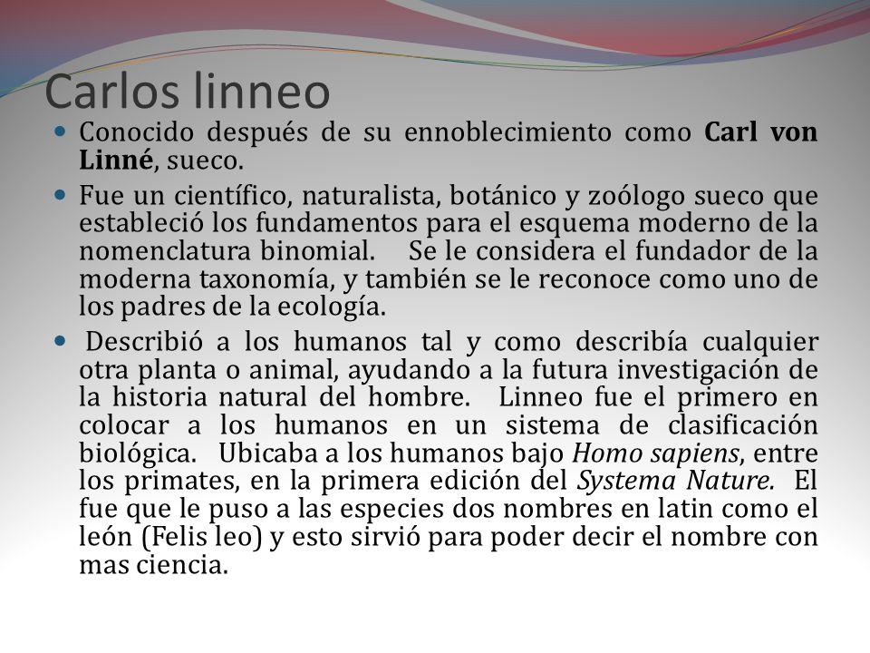 Carlos linneo Conocido después de su ennoblecimiento como Carl von Linné, sueco.
