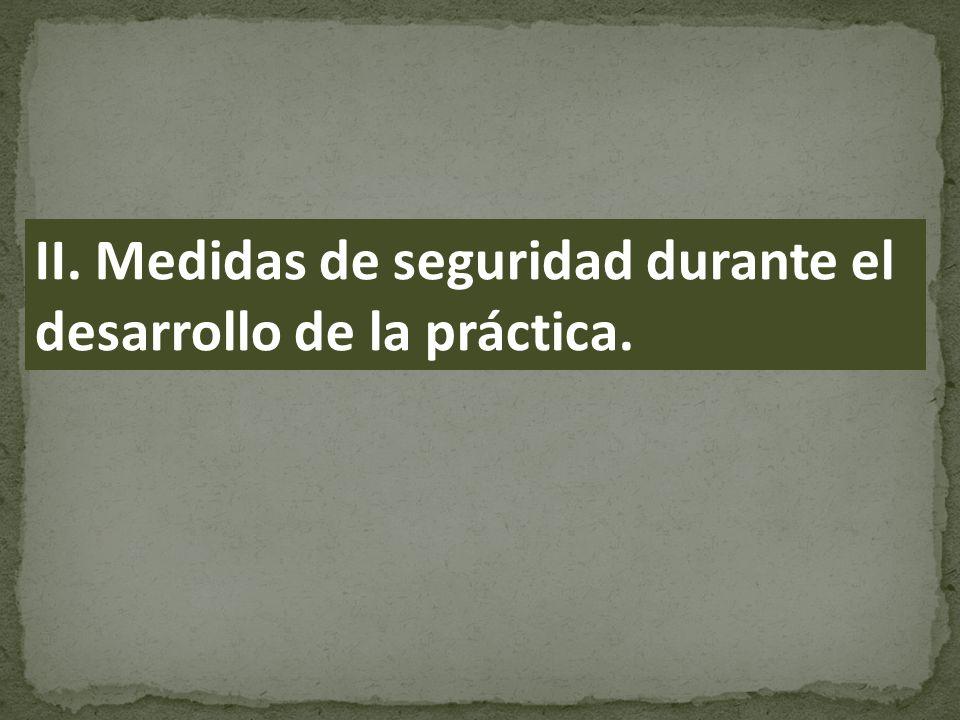 II. Medidas de seguridad durante el desarrollo de la práctica.