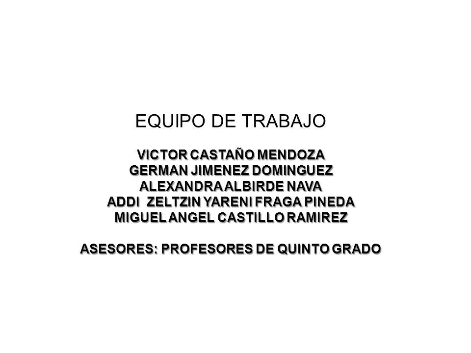 VICTOR CASTAÑO MENDOZA GERMAN JIMENEZ DOMINGUEZ ALEXANDRA ALBIRDE NAVA ADDI ZELTZIN YARENI FRAGA PINEDA MIGUEL ANGEL CASTILLO RAMIREZ ASESORES: PROFES