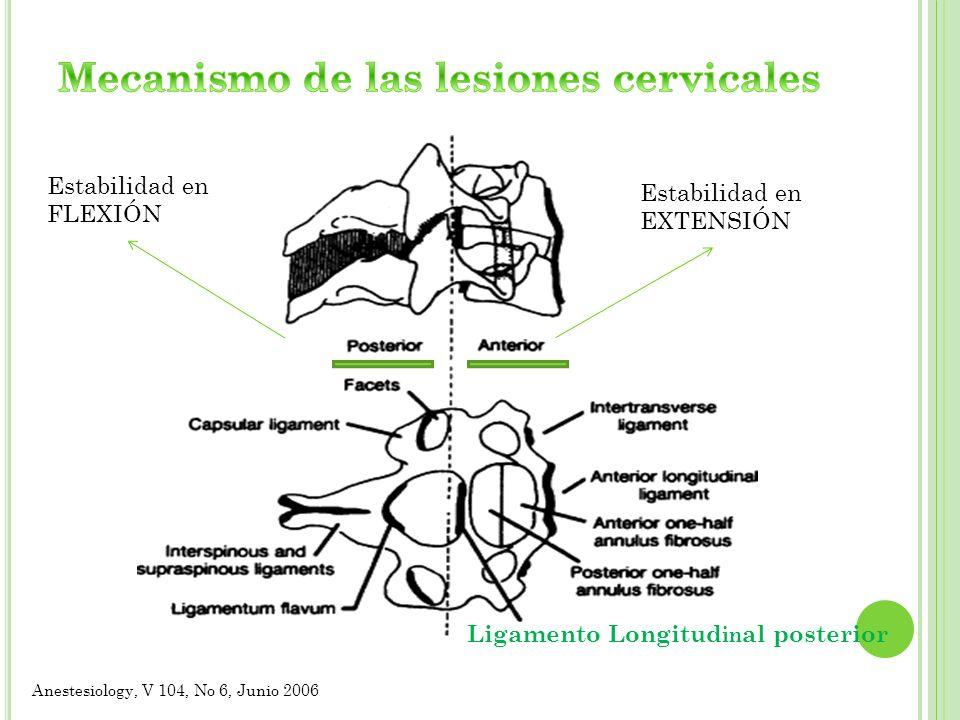 Ligamento Longitud in al posterior Anestesiology, V 104, No 6, Junio 2006 Estabilidad en EXTENSIÓN Estabilidad en FLEXIÓN