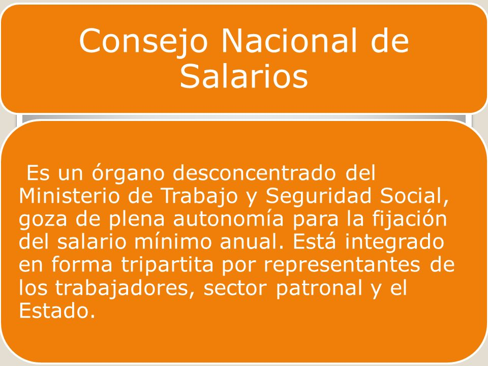 Consejo Nacional de Salarios Es un órgano desconcentrado del Ministerio de Trabajo y Seguridad Social, goza de plena autonomía para la fijación del salario mínimo anual.