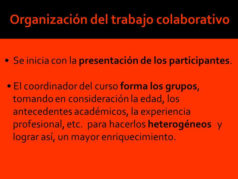 Se inicia con la presentación de los participantes. El coordinador del curso forma los grupos, tomando en consideración la edad, los antecedentes acad
