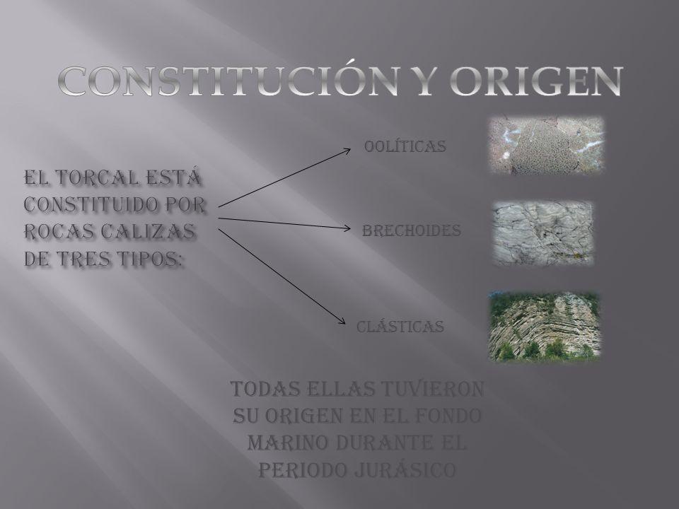 OOLÍTICAS BRECHOIDES CLÁSTICAS Todas ellas tuvieron su origen en el fondo marino durante el periodo Jurásico