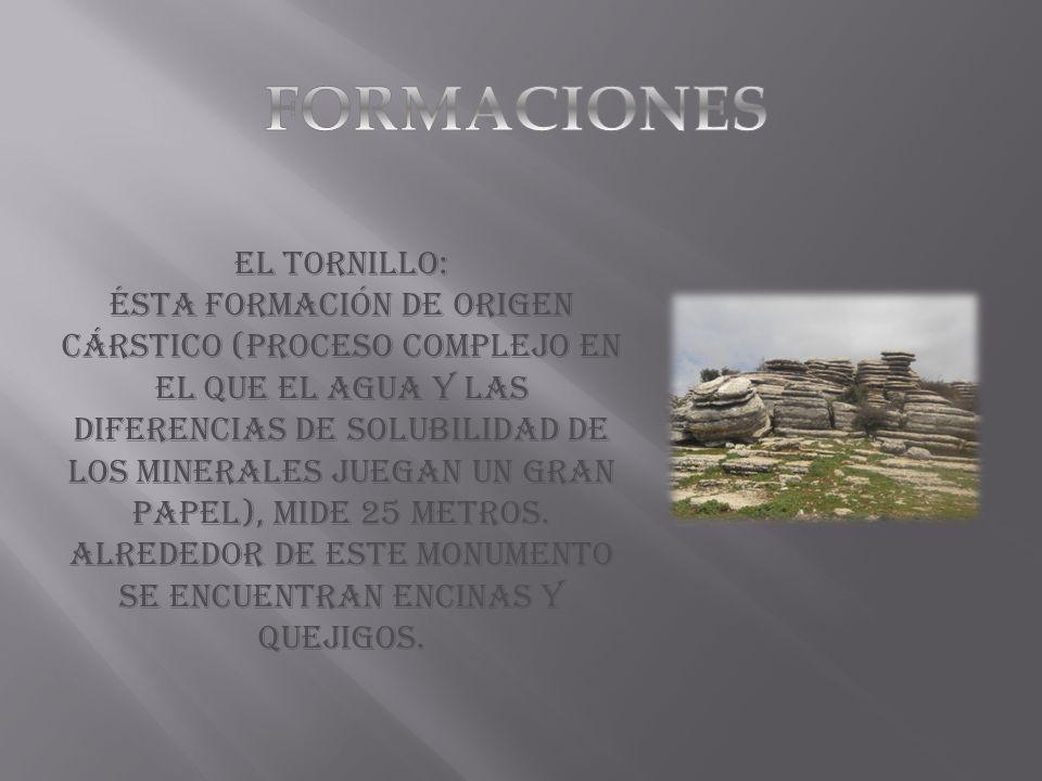 El tornillo: Ésta formación de origen Cárstico (proceso complejo en el que el agua y las diferencias de solubilidad de los minerales juegan un gran pa