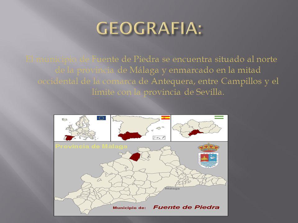 El municipio de Fuente de Piedra se encuentra situado al norte de la provincia de Málaga y enmarcado en la mitad occidental de la comarca de Antequera