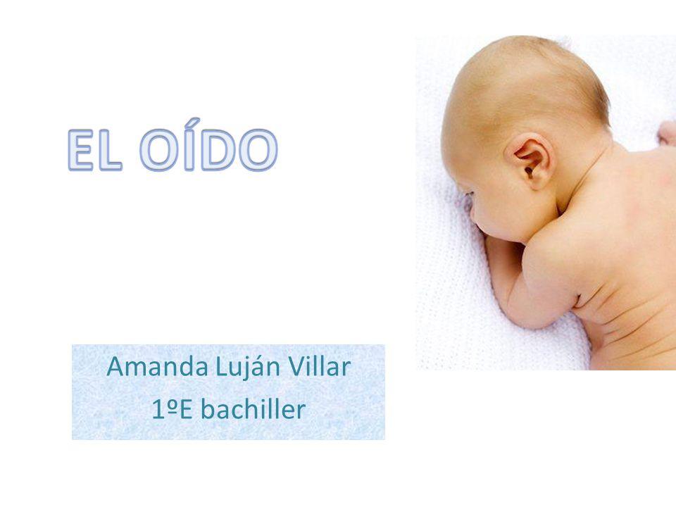 Amanda Luján Villar 1ºE bachiller
