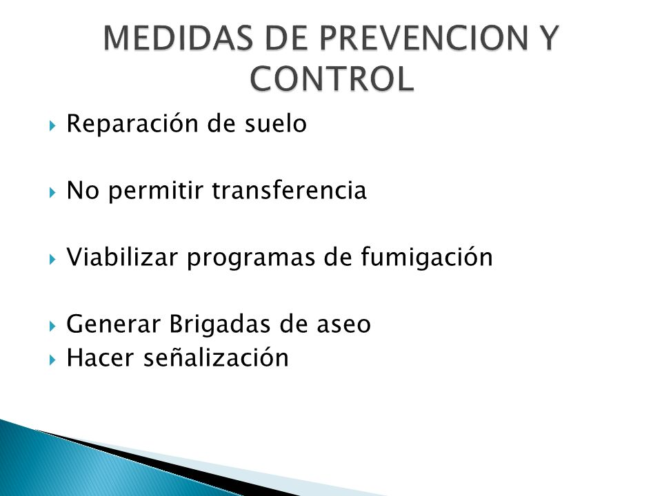 Reparación de suelo No permitir transferencia Viabilizar programas de fumigación Generar Brigadas de aseo Hacer señalización