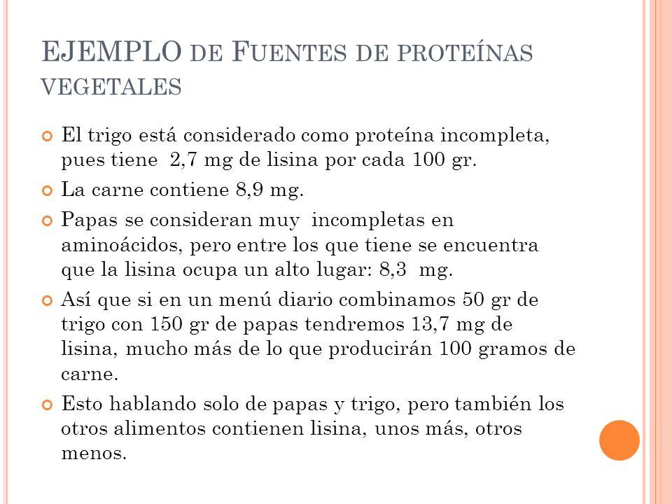 EJEMPLO DE F UENTES DE PROTEÍNAS VEGETALES El trigo está considerado como proteína incompleta, pues tiene 2,7 mg de lisina por cada 100 gr. La carne c