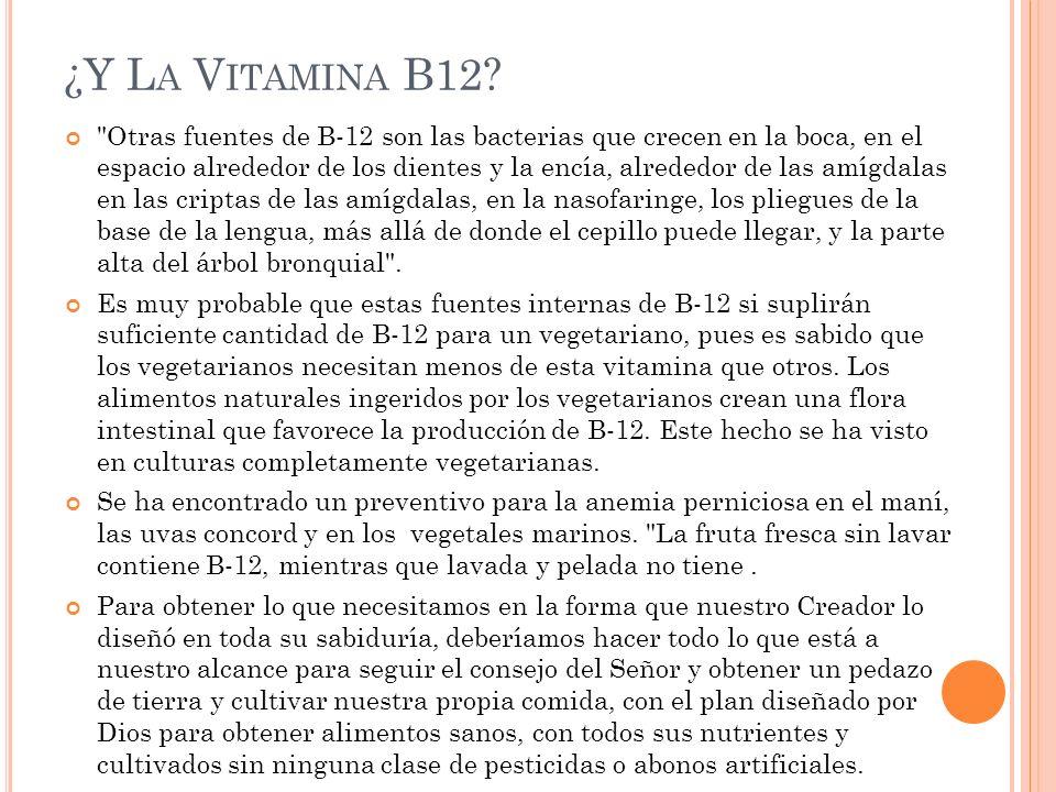 ¿Y L A V ITAMINA B12?