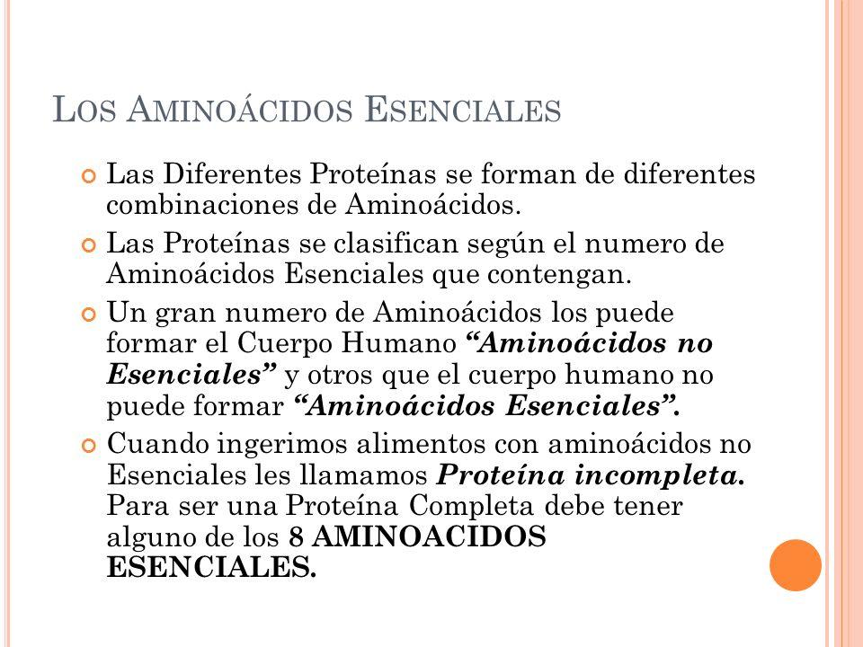 L OS A MINOÁCIDOS E SENCIALES Las Diferentes Proteínas se forman de diferentes combinaciones de Aminoácidos. Las Proteínas se clasifican según el nume