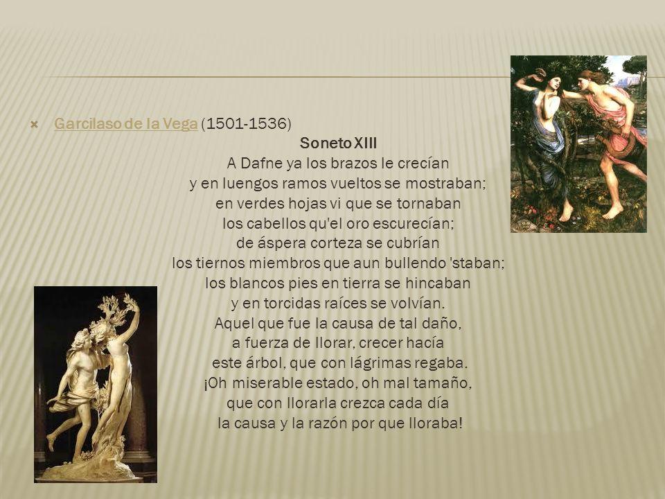 Garcilaso de la Vega (1501-1536) Garcilaso de la Vega Soneto XIII A Dafne ya los brazos le crecían y en luengos ramos vueltos se mostraban; en verdes