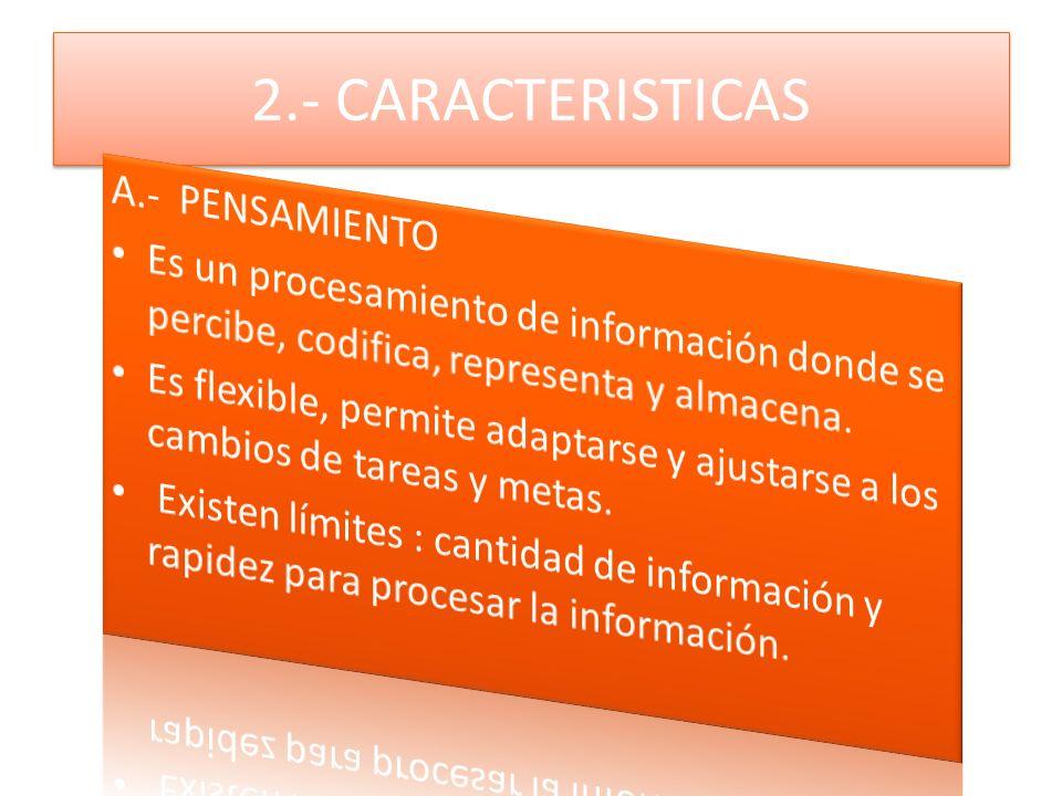 2.- CARACTERISTICAS
