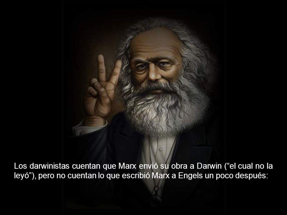 El que no es darvinista es creacionista o, al menos, sospechoso.