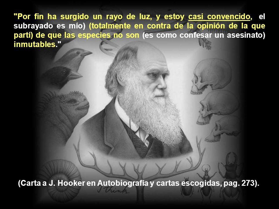 Del mítico y trascendental viaje del Beagle no volvió Darwin con ninguna idea sobre la evolución, a pesar de que, como nos cuenta en su Autobiografía, había oído hablar de Lamarck.